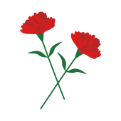 【花】2輪の花 母の日に赤いカーネーション イラスト