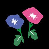 【花】和風の朝顔(アサガオ)フリー イラスト