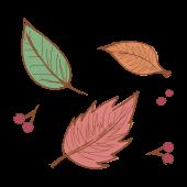 【秋の紅葉】落ち葉(葉っぱ)の 無料 イラスト
