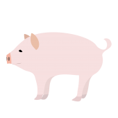 かわいい♪豚(ぶた・ブタ)ちゃん 無料 イラスト