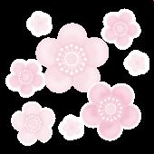 梅(ウメ)の花♪ふんわり かわいい♪ フリーイラスト